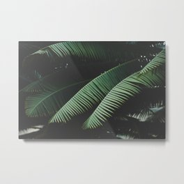 Night in the Tropics Metal Print