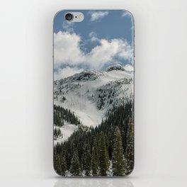 Ymir Bowl II iPhone Skin