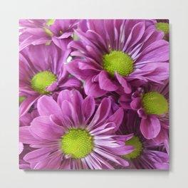 Lavender Flower 3 Metal Print