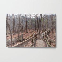 wooden path Metal Print