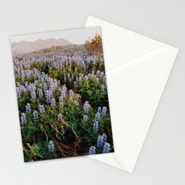 Wild Lupines in the Midnight Sun Stationery Cards
