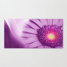 Flower - Gerbera Canvas Print