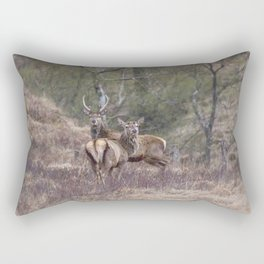 stags in the Scottish Highlands Rectangular Pillow