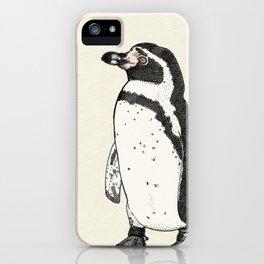 Humboldt Penguin iPhone Case