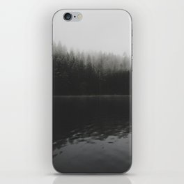 Verticle Frosted Trees Lake iPhone Skin