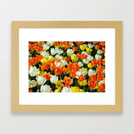 White Orange and Yellow, Oh My Framed Art Print