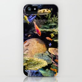 Brain Coral and Bright Colours iPhone Case