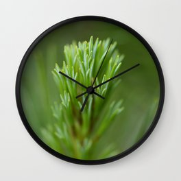 Pine Needle Macro Wall Clock