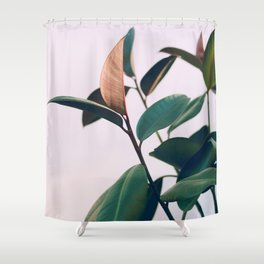 Ficus Elastica #4 Shower Curtain