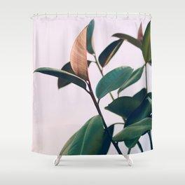 Ficus Elastica #4 Shower Curtain