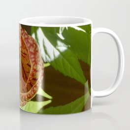 Opening Orchids Coffee Mug