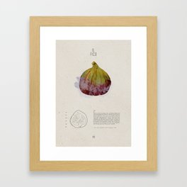Il Fico Framed Art Print