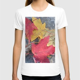 Red and Gold Leaves T-shirt