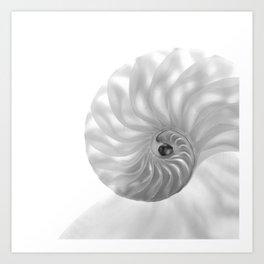 Nautilus Chambers... Art Print