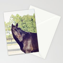 Bubba in Color Stationery Cards