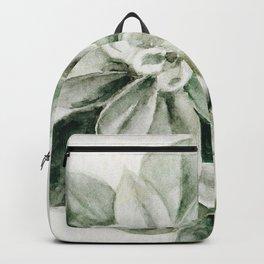 Sedum Succulents Backpack