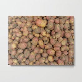 The food in the garden of fruits and vegetables Metal Print