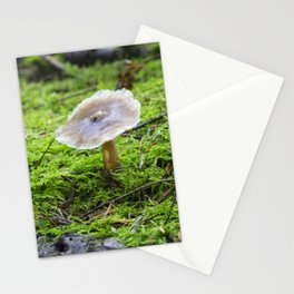 Fungi and moss Stationery Cards