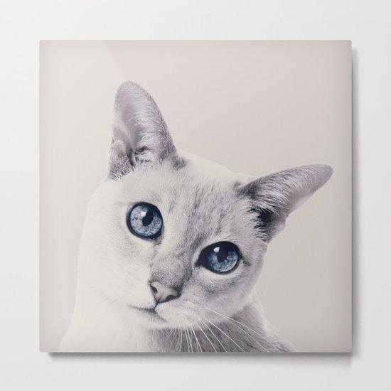 CAT 3 Metal Print