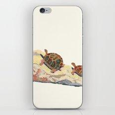 The Tortoise on a Rock iPhone & iPod Skin