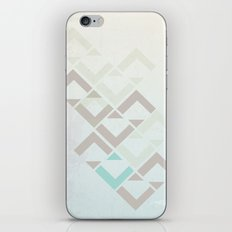 representing the defendant iPhone & iPod Skin