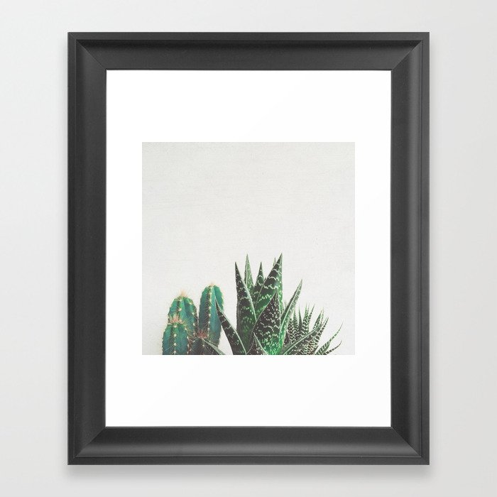 Cactus & Succulents Gerahmter Kunstdruck