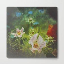 flwrs - summer flowers Metal Print