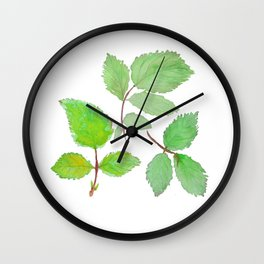 3 green rose leaves watercolor Wall Clock