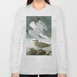 Seagulls Illustration - Birds in America Long Sleeve T-shirt