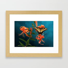 Eastern Tiger Swallowtail Butterfly On Orange Tiger Lily Framed Art Print