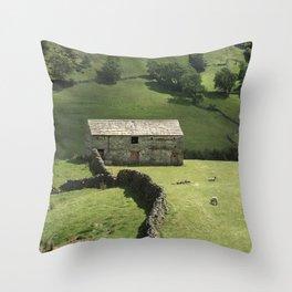Walls and Barns Throw Pillow