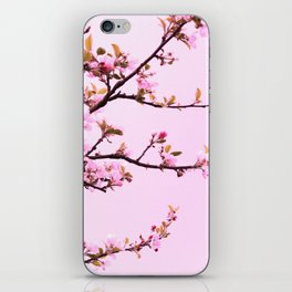 Spring Dreaming iPhone Skin