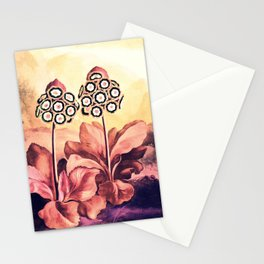 Rose Gold Pink Auriculas Templa of Flora Stationery Cards