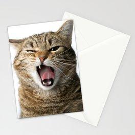 Crazy Cat Stationery Cards