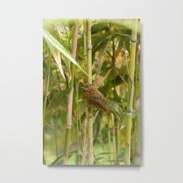 Bamboo Birdie Metal Print
