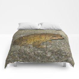Mr. Toad Comforters