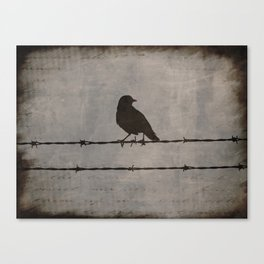 Rustic Black Bird Barbed Wire Modern Country Home Decor Art Matted Picture A476 Canvas Print