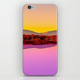 Level iPhone Skin