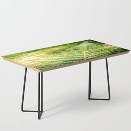 Green Fern Coffee Table