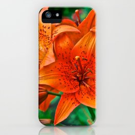 Orange Tiger Lilies - The Peace Collection iPhone Case