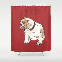 english bulldog Shower Curtains featuring English Bulldog by Tammy Kushnir