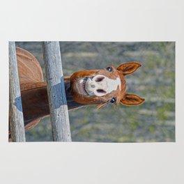 Horse Humour Rug