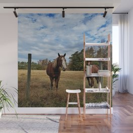 Two Horse Amigos in Pasture Wall Mural