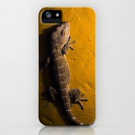 Gecko Tokay iPhone Case
