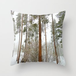 Winter Park Late Spring Study 1 Throw Pillow