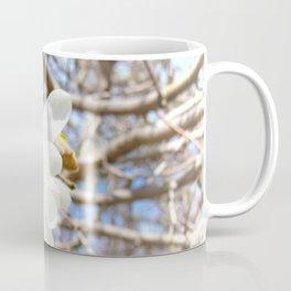 Magnolia White Flower Tree Spring Blossoms Star Shape Coffee Mug