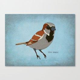 The House Sparrow Canvas Print