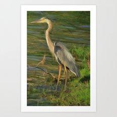 Blue Heron On The Bank Art Print
