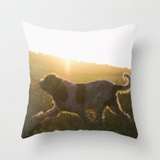 Brown Roan Italian Spinone Dog Throw Pillow