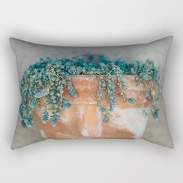 Succulent Love Rectangular Pillow